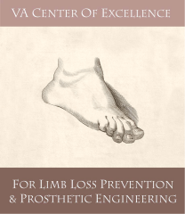 Logo of the VA CoE for Limb Loss Prevention & Prosthetic Engineering